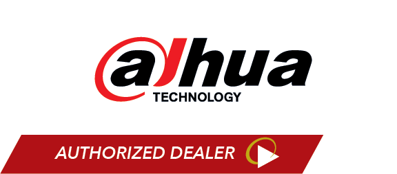 Dahua Video Security System